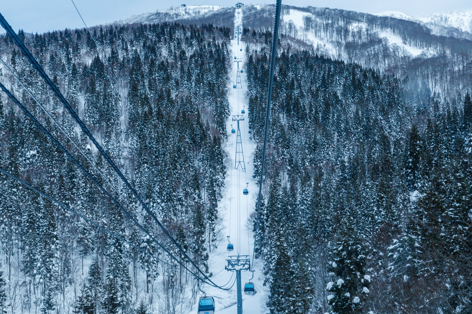 #055 富良野、冬の宿泊者数が増えている!